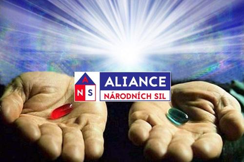 Aliance národních sil odvážně ukazuje lidem cestu v právě probíhajícím celosvětovém přeformátovávání lidské společnosti