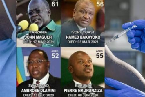 Přesto, že byli zavražděni 4 prominentní vůdci, kteří se vzepřeli WHO, zůstávají ostatní africké státy vzdorní vůči falešné pandemii