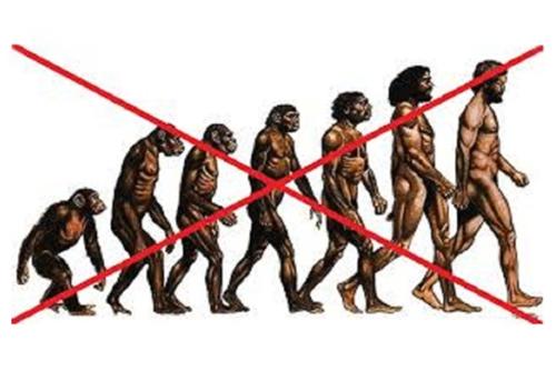 Charles Darwin a jeho evoluční teorie