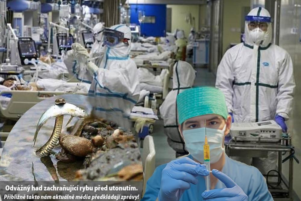 Mezinárodní výstražná zpráva o COVID-19 – Mezinárodní prohlášení zdravotníků, lékařů a vědců, které bylo zasláno vládám třiceti zemí (4. část)